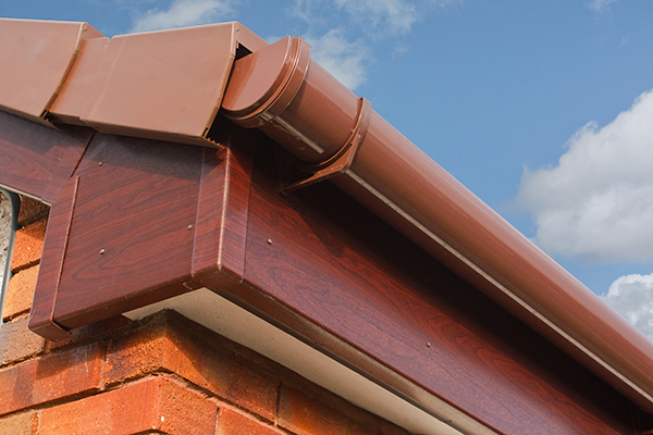 Fascia and gutters on home